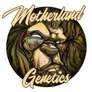 Motherland Genetics